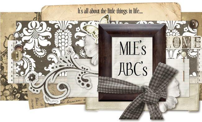 MLE's ABC's