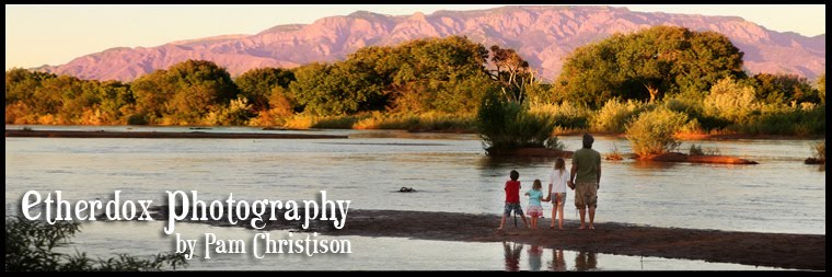 Etherdox Photography - Albuquerque Children and Family Photography