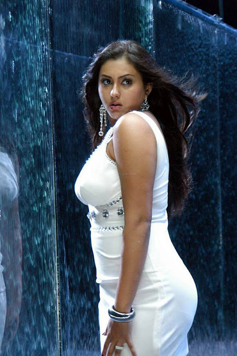 namitha saree namitha in red blouse namitha short skirt namitha look black saree expose namitha in white dress picture unseen pics