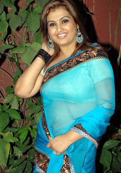 sona heiden in blue saree sona collection unseen pics