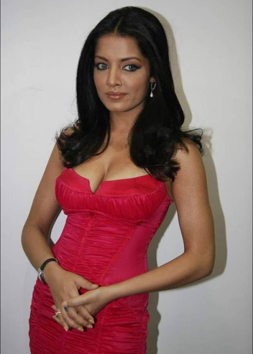 celina jaitley celeina jaitley red dress picture latest photos