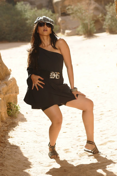 anushka song in the movie of ragada latest photos