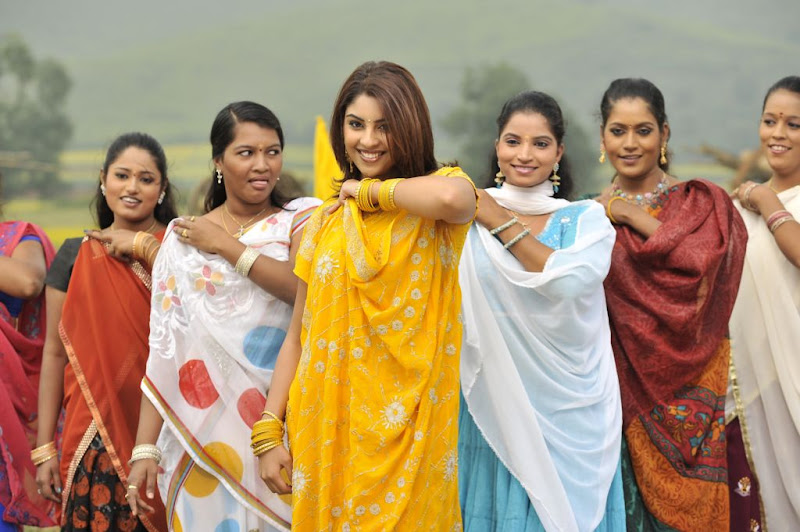 Richa Gangopadhyay  Mirapakaya Telugu Film Latest Cute Saree Stills Beautiful Gallery wallpapers