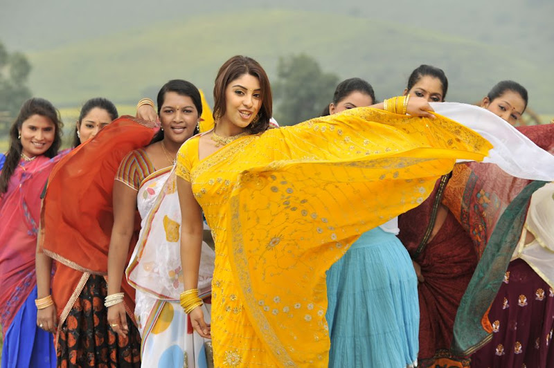 Richa Gangopadhyay  Mirapakaya Telugu Film Latest Cute Saree Stills Beautiful Gallery Photoshoot images