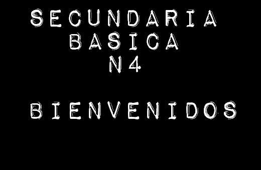 Secundaria Basica Nº4