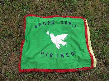 Bandera Pirineos 440
