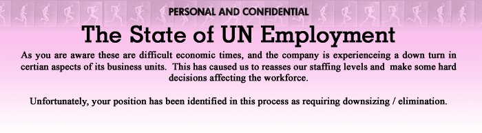 The state of UN Employment
