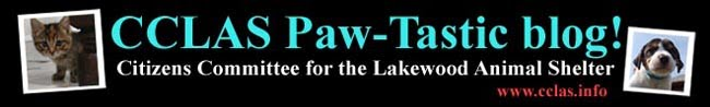 CCLAS Paw-tastic Blog
