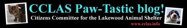 CCLAS Paw-tastic Blog