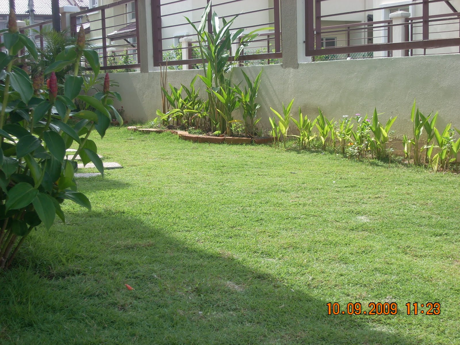 KELUARGA PAK SARIP: Membina Taman ( Mini Garden )
