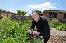 Fosh Food's organic garden