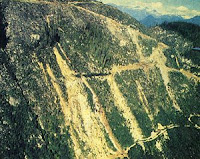 Clearcutting causes soil erosion