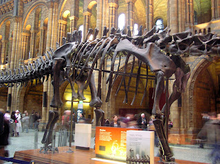 London_Museum-of-Natural-History