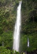 Lider Waterfall (the highest waterfall in Banyuwangi)