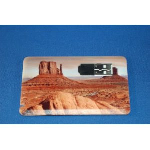 rosh credit card usb