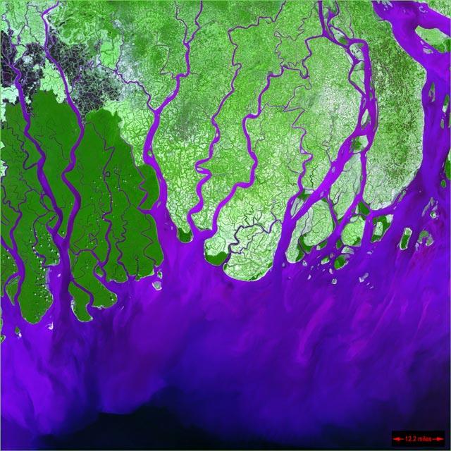 LEAVES OF GRASS: EARTH AS ART - IMAGENS ARTÍSTICAS DA TERRA