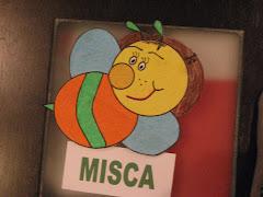 MISCA
