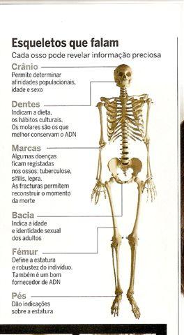 Esqueletos que falam