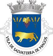 SALVATERRA DE MAGOS