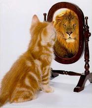 [cat-lion.jpg]