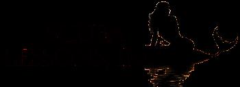Scuba Lessons Inc Logo