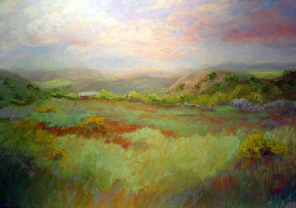 Point Reyes Hills