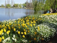 Springtime at Floriade