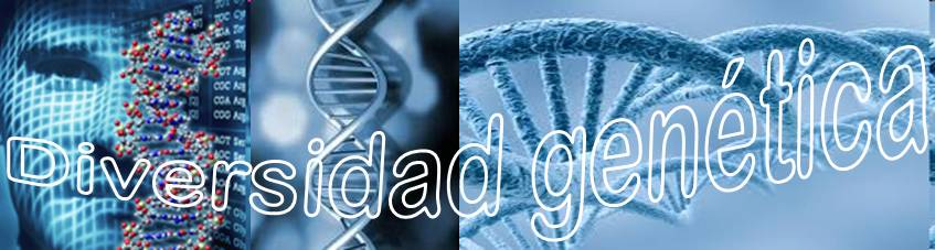 Diversidad Genética