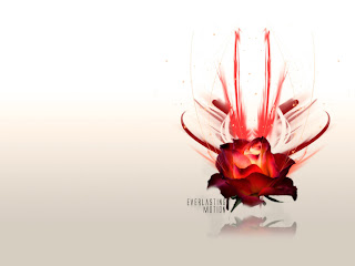 Everlasting Motion Rose wallpaper