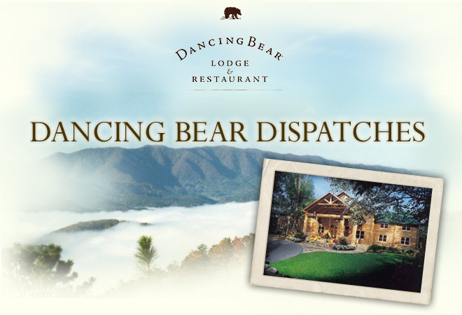 Dancing Bear Dispatches