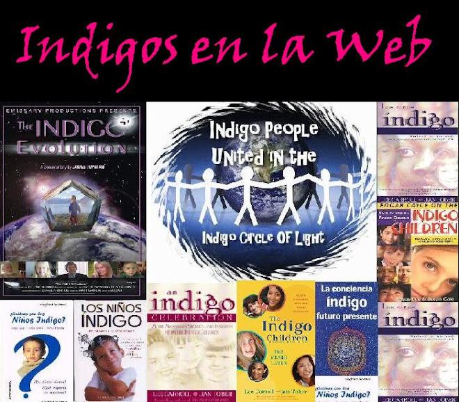 Indigos en la Web