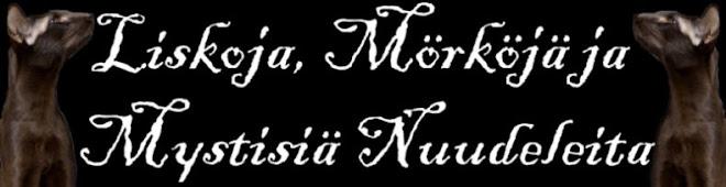 Velhoja, Liskoja & Mystisiä Nuudeleita