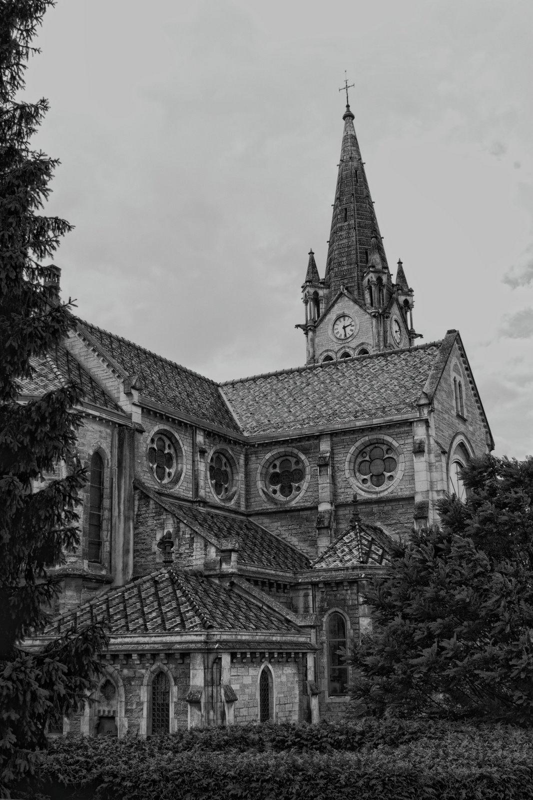 Maison de campagne de Quasimodo + Ajout du 22 juin _MG_3471