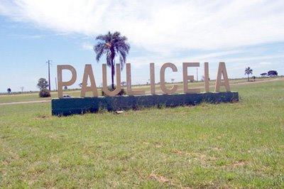 Paulicéia 2008.