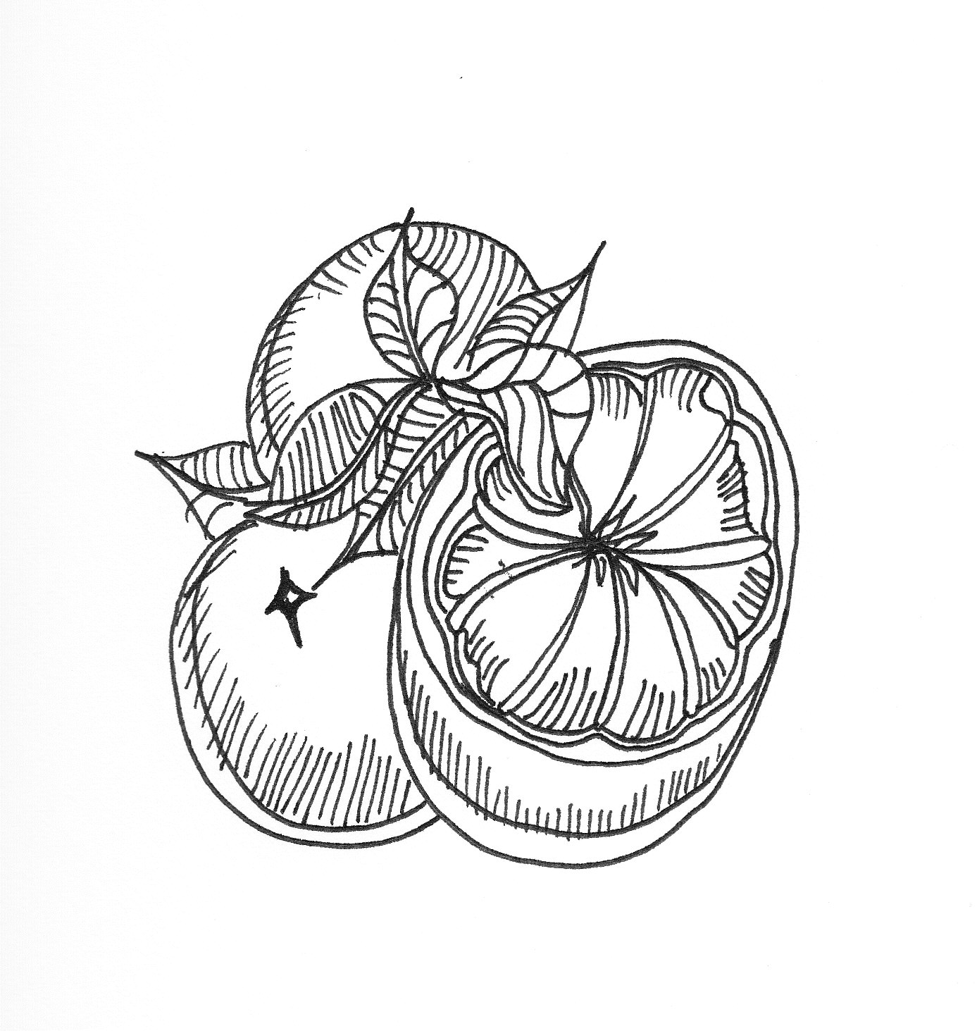 Line Drawing Fruit : Rob s learning assign point of sale cont
