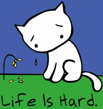 http://1.bp.blogspot.com/_mRQ4J56bL70/TRDDWDCJtwI/AAAAAAAAAkI/l4l9OqlEmjQ/s1600/sad-cat1.jpg