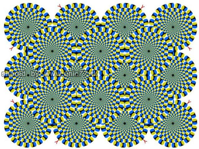 cool_eye_deception_640_01.jpg (640×480)