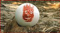 Wilson the Volleyball in Cast Away (© 2000 Twentieth Century Fox and Dreamworks LLC. All Rights Reserved)