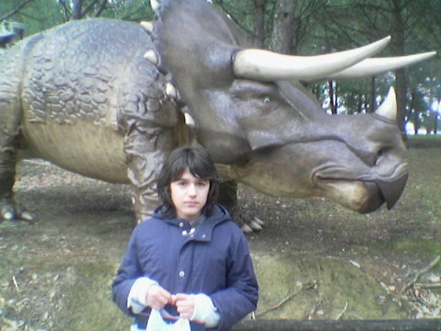 [il+triceratopo]