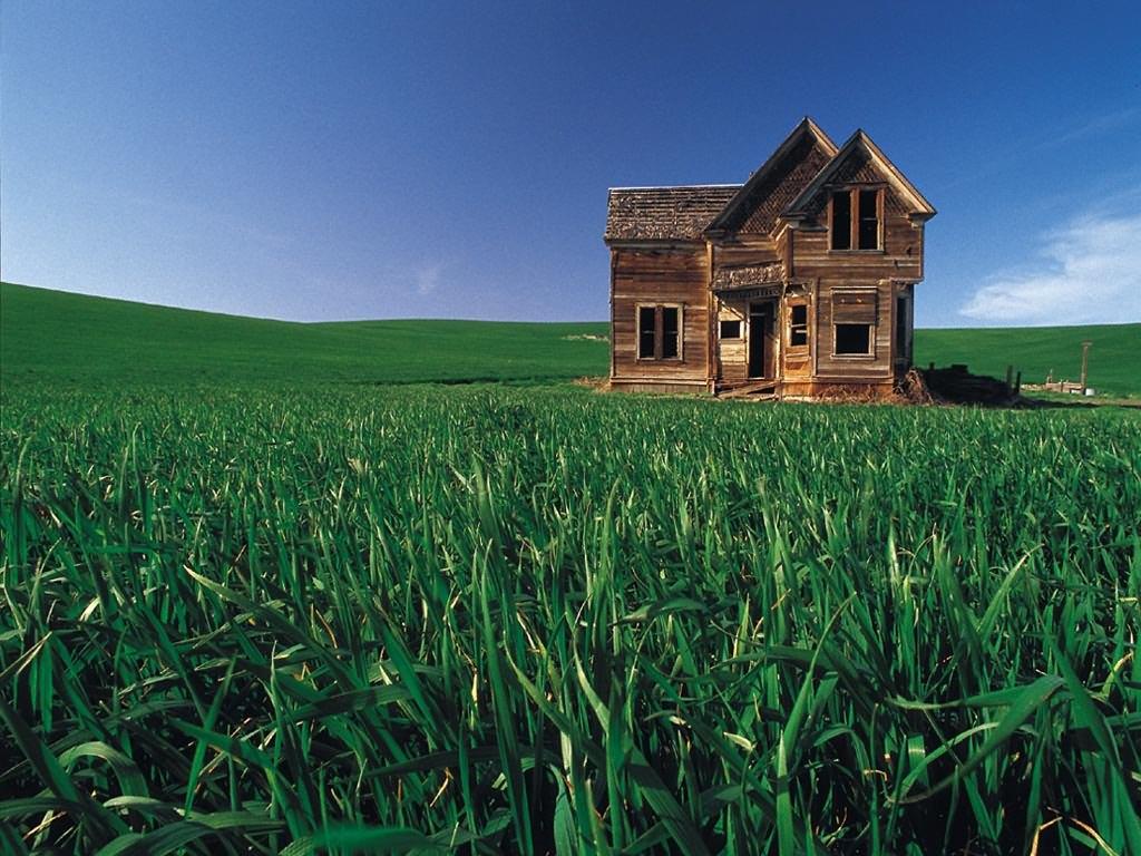 Wood House : wood house