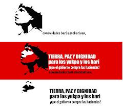 Solidaridad con los pueblos indígenas