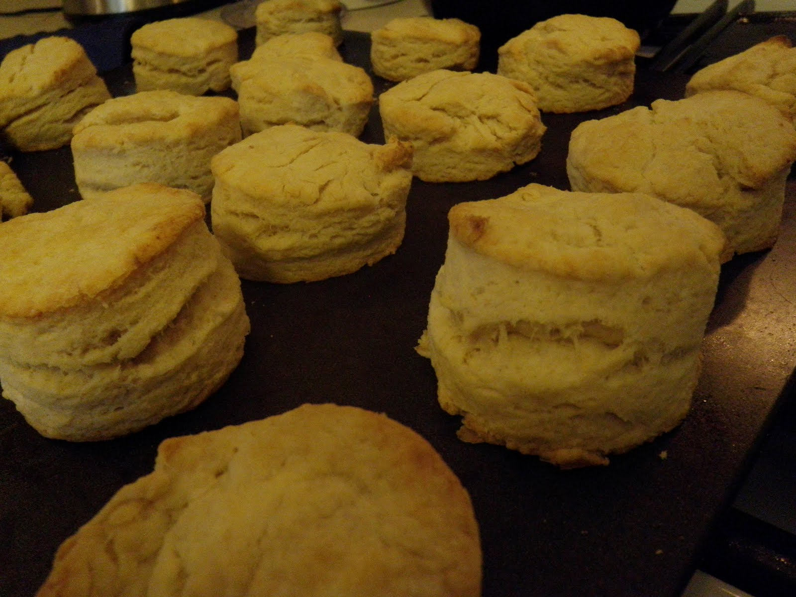 Edible Nutrition: An Obsession & Biscuits!