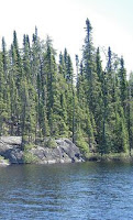 Boreal Forest at the Kopka River - Nature Sounds.ca