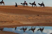 Las aguas del desierto