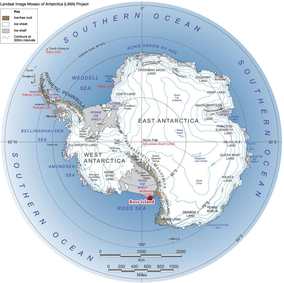 antarctica_penguins.jpg