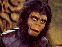 And, uh, one for all you chimp ladies out there.