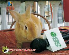 Pradika Rabbit and SBO TV