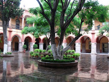 Patio del Edificio Central de la UASLP
