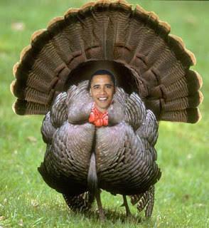 Obama Thanksgiving Turkey