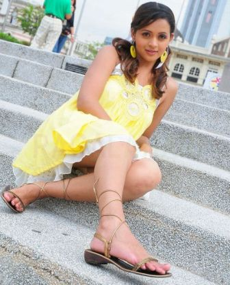 Tamil-Actress-Bhavana-Hot-Photos2.jpg (336×416)